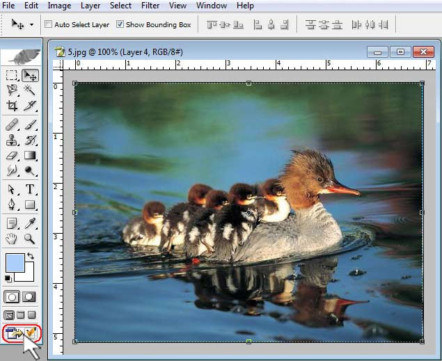 Image Redirect To ImageReady-spiderorbit