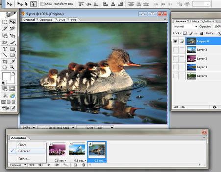 GIF Animation In Photoshop-spiderorbit